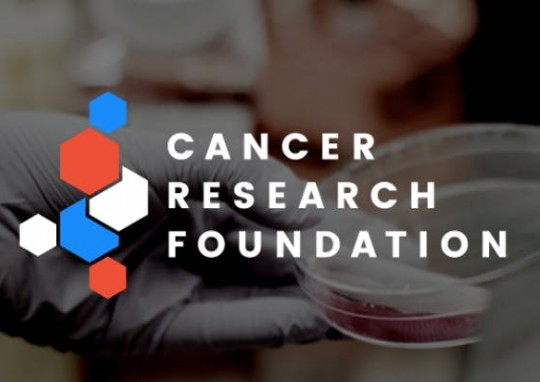 Fighting cancer: Meet the Cancer Research Foundation's past young investigators