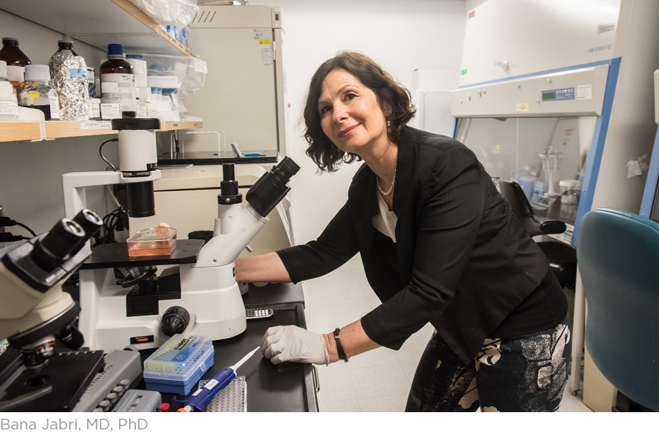 Family's gift supports research examining gut-brain connection in celiac disease